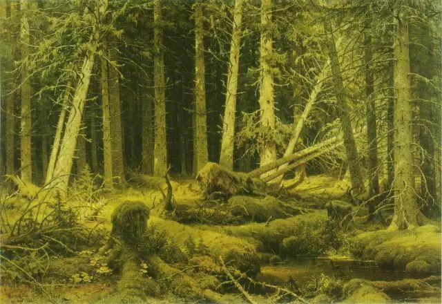 最美风景:俄国风景画大师 希施金的经典作品赏析