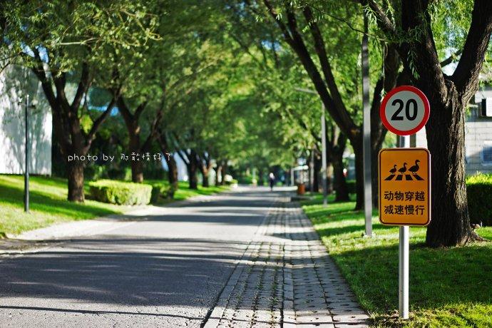 """京城唯一的热带风格露天汤泉,私汤度假酒店,去过的人都自问""""这里是北京?"""""""