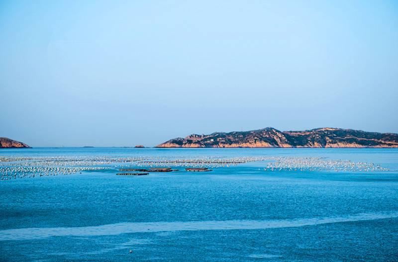 国庆看海吃海鲜!这处藏在浙东的海上桃源,美得就像童话仙境!