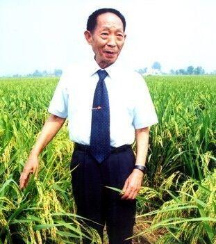 87岁袁隆平再创奇迹!他还带来两个好消息