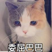 搞笑 正文  by:中国第一滩放鸡岛岛主 30卷纸巾 我也不知道我是怎么搬图片