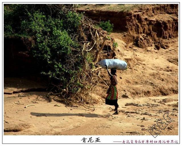 桑布鲁:一条风干的鳄鱼尸体横陈地上,到处可见蚁山鸟巢