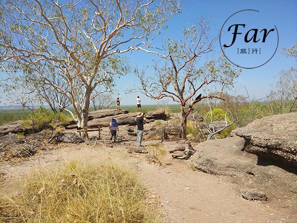 """地球上最后的处女地 澳大利亚最""""野""""的旅行在这里"""