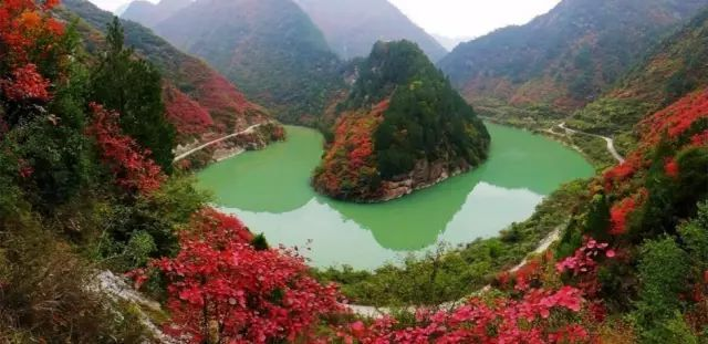 秦岭三大绝美老国道,条条惊艳至极!这个秋天不愁没地方去了!