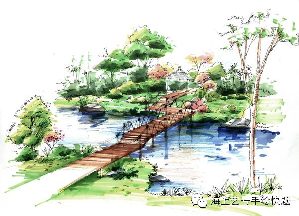 景观设计手绘植物综合运用讲解