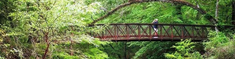 本周六德州国家公园免费游,是时候去户外呼吸一下新鲜空气啦!