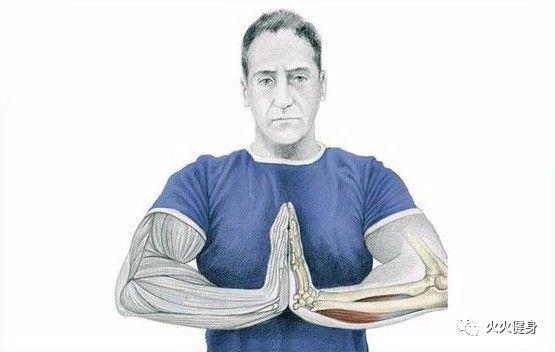 牵动手指居然也能拉伸肌肉?还能瘦手臂?健身