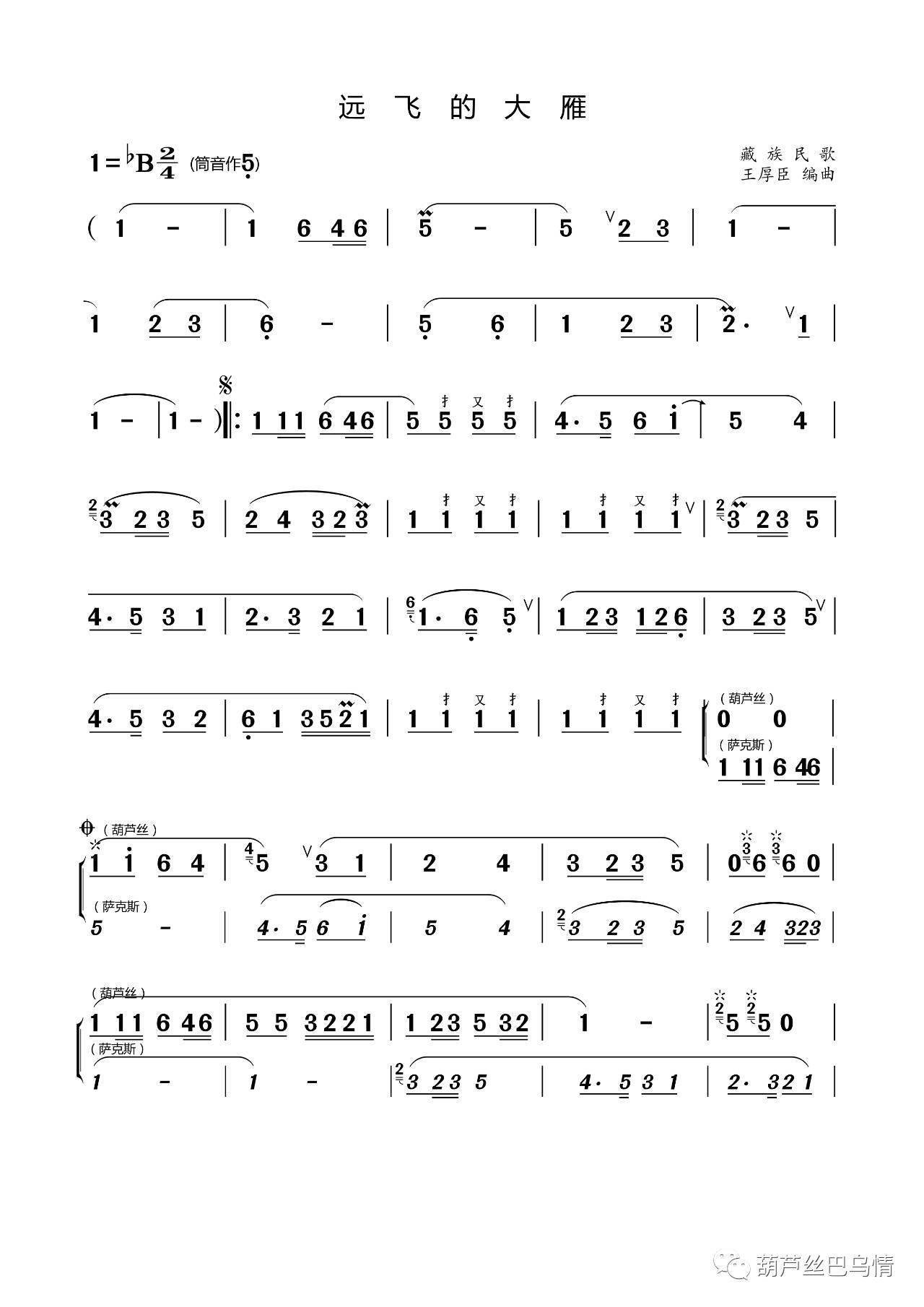 【国庆巨献】七孔宽音域葫芦丝独奏《远飞的大雁》——王厚臣