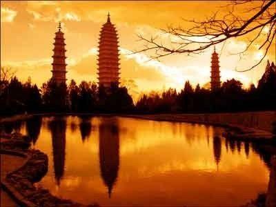 上海旅游局投诉电话图片
