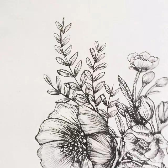 需要多观察真花 观察和练习的仔细 喜欢就拿针管笔画起来吧~ /// 我们图片