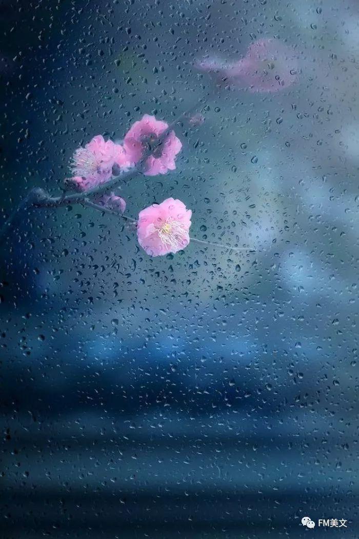 �r,_听一场秋雨,雨碎天涯;吹一抹西风,风散落花