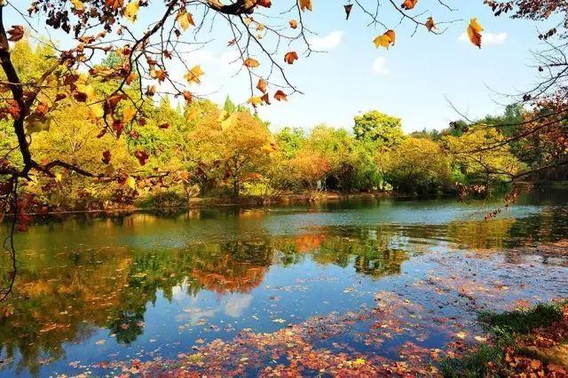贵州秋天最值得去的7个地方,每一个都让人怦然