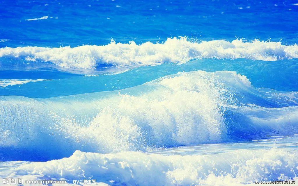 澳洲一群老奶奶来到海边,衣服一脱换上泳装后,海滩上的人全都看呆掉了!