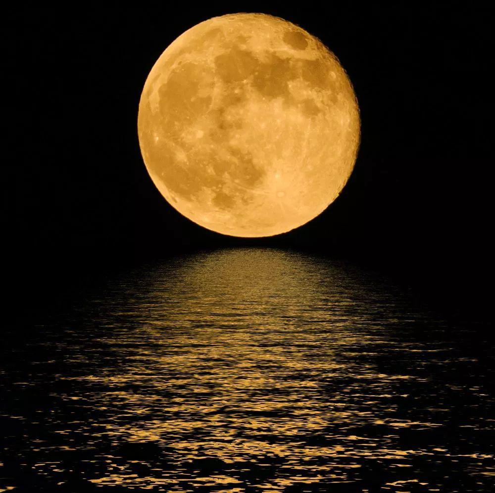 月圆之夜神秘人