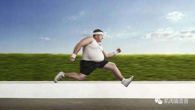 胖子该怎么减肥?相比伤膝盖的跑步运动,这3种方式更适合