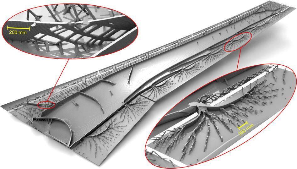 客机机翼优化400次后,最终结构竟与鸟骨惊人般相似!