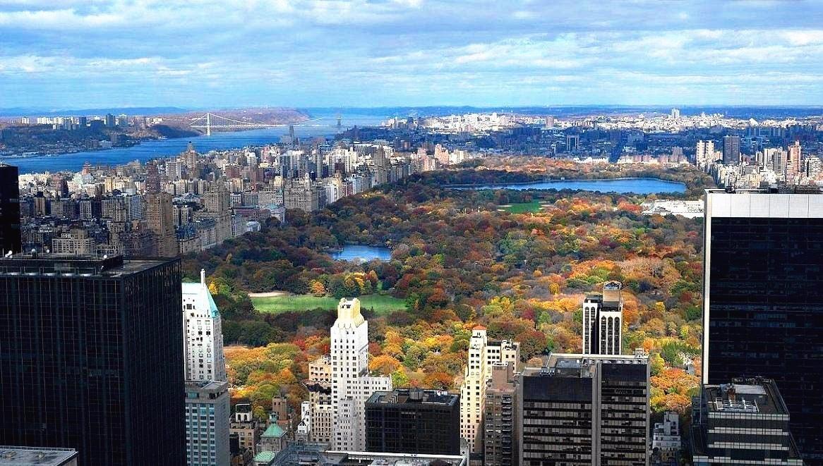 丨纽约中央公园,图:网络丨图片