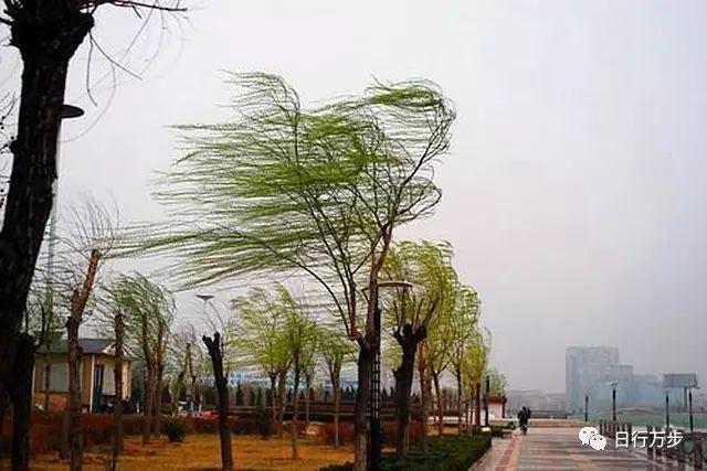 风_多风天气