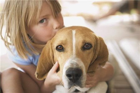 Image result for 為什麼要養狗?告訴你養狗的十大好處!