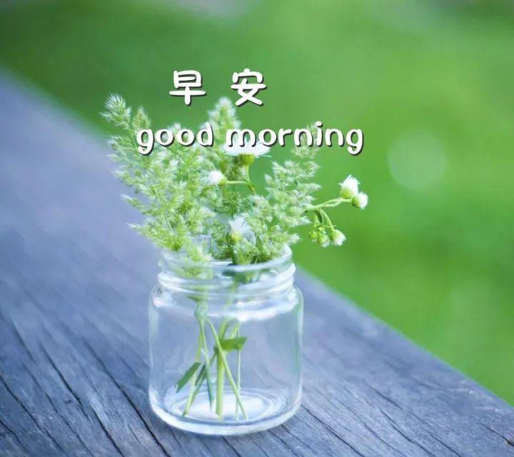 朋友圈唯美早安图片 唯美早安心语语录一句话图片