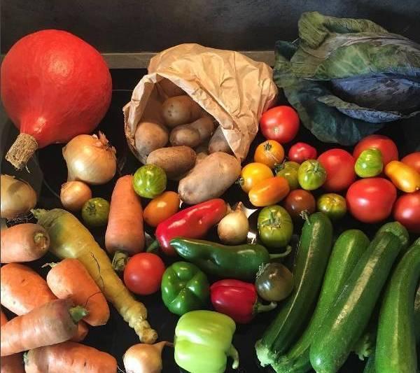 运动减肥最佳三餐食谱图片