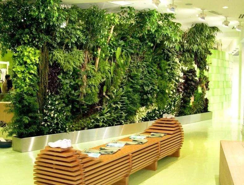 酒店,餐厅设计了室内植物墙,再配上灯光,提升了自身档次.图片