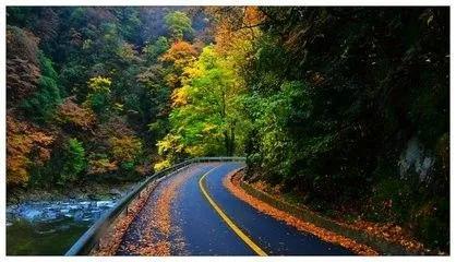 巴中正式获批成为国家森林城市_搜狐社会图片
