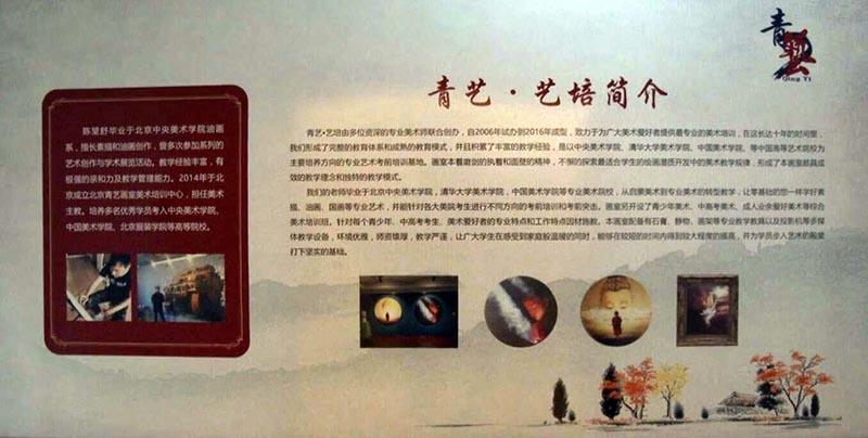 青年画家陈望舒:画画是我的梦想,再不逐梦我就老了