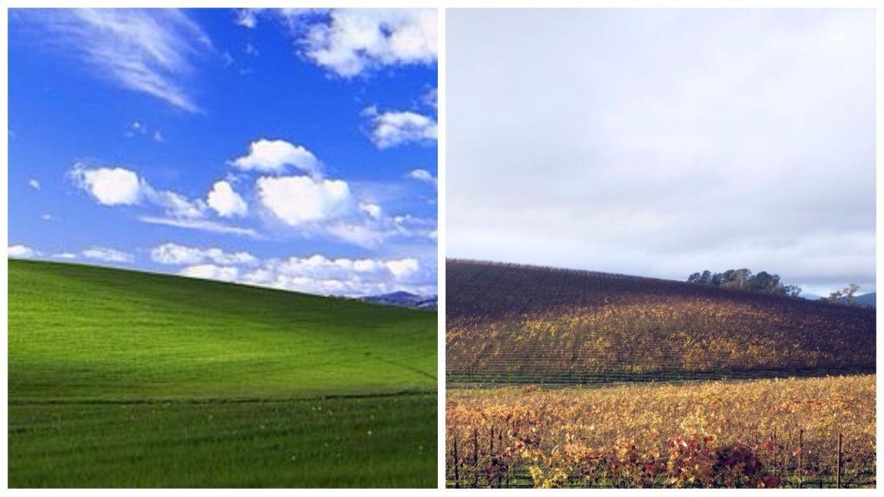 还记得Windows XP经典桌面吗?背后的故事也很有趣呢_站长之家