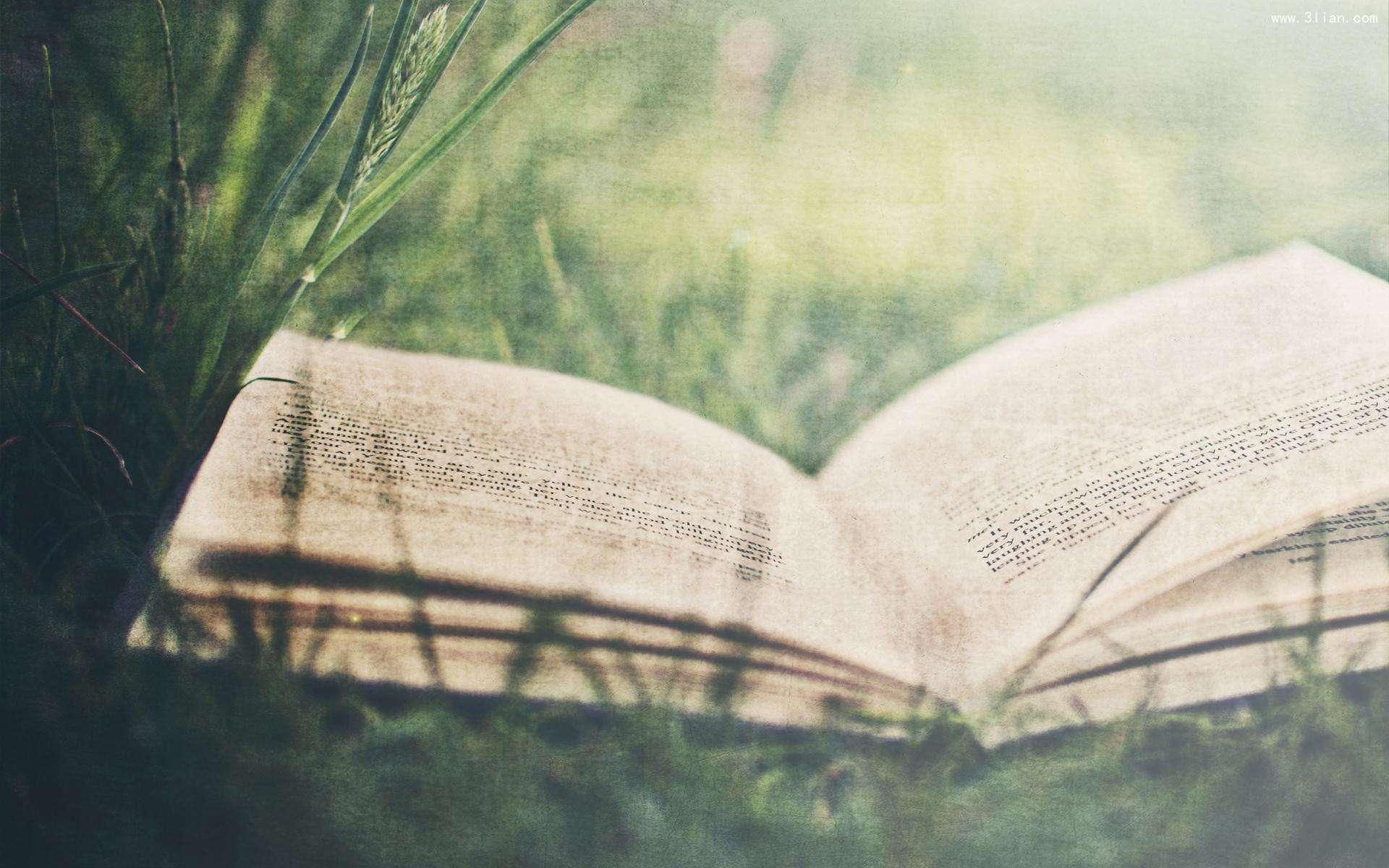 澳门金沙网上娱乐场:MBA英语阅读学习方法