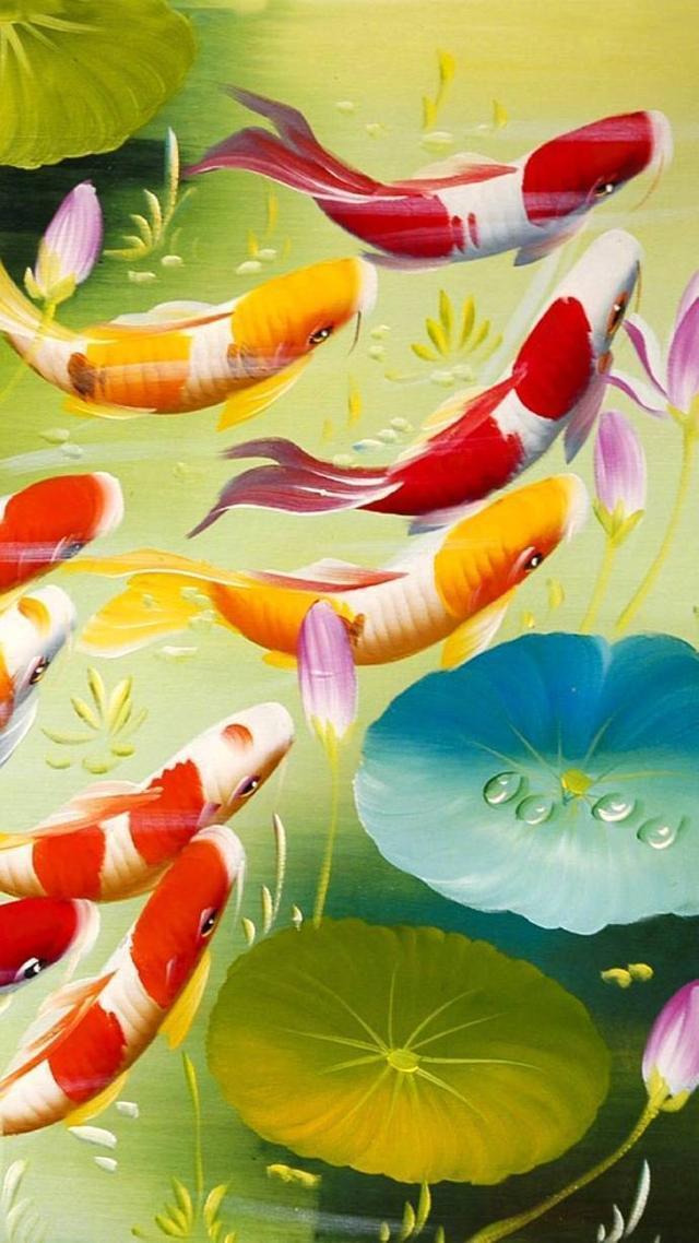 手机壁纸:锦鲤——吉祥如意,风生水起