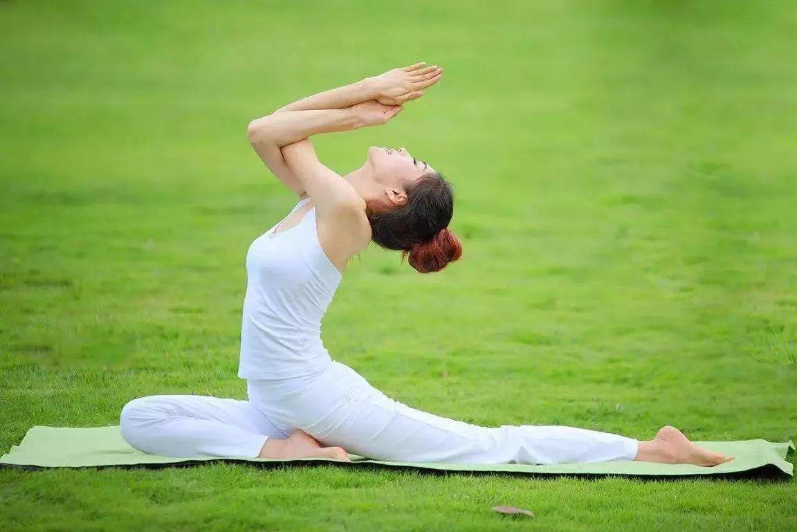 基础瑜伽,哈塔瑜伽,减压瑜伽,纤体瑜伽,瘦身瑜伽,肩颈理疗瑜伽,拉伸图片