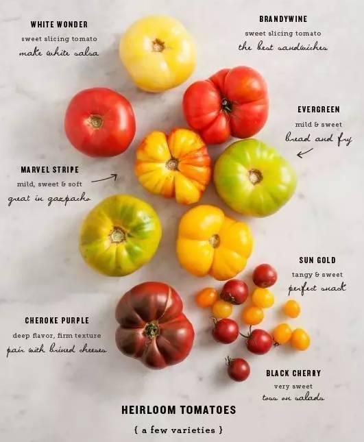 我的天!吃尖头西红柿会致癌?今天教您好西红柿该咋挑!