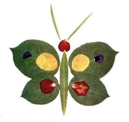 树叶像五彩的蝴蝶在空中飞舞,千姿百态的树叶俯拾可得,圆形的,条形的
