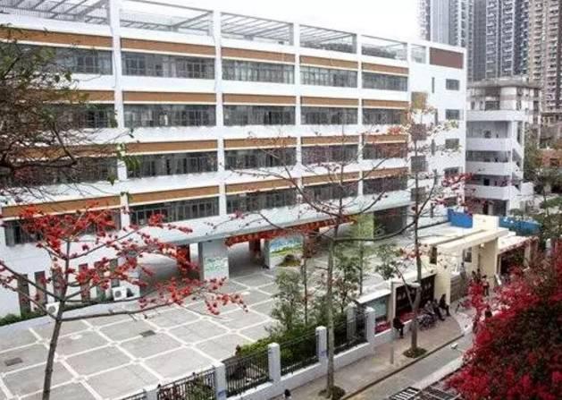 新亚洲学校_新亚洲学校位于深圳市龙岗区中心城新亚洲花园内,创办于2005年8月,是
