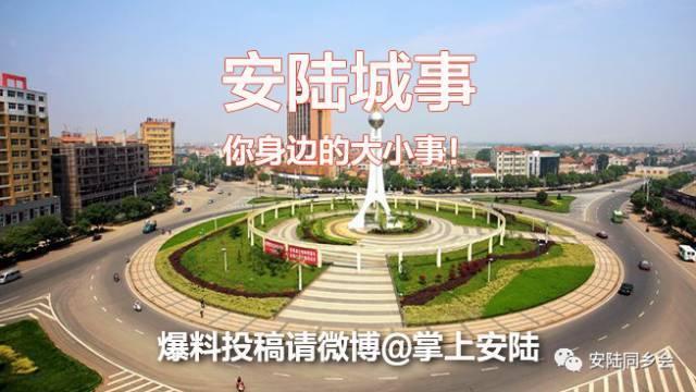 安陆人口网_安陆人口与计划生育综合服务中心改建工程项目 安陆信息网