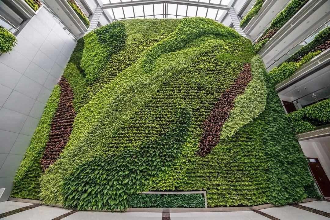 花墙 景观 墙 植物 1080_720