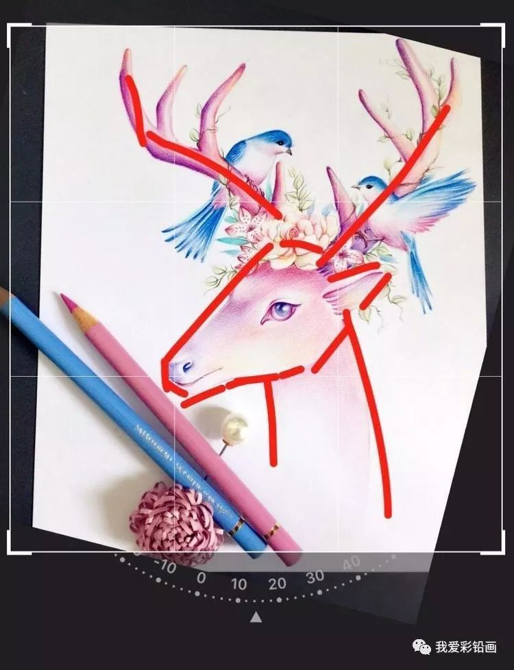 一起画个灵兽吧,森林屿鹿(彩铅手绘教程)