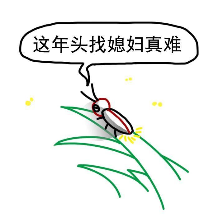萤火虫发光是为了找对象. 279.蟑螂只需受精一次,就可以永久产卵.