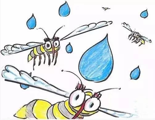 为什么蚊子永远不会被雨砸死?千万别被孩子问住了!