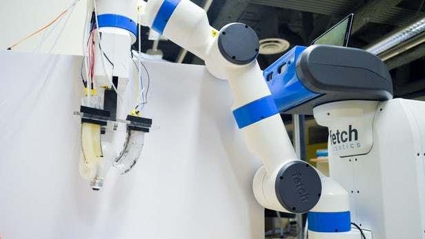 """分校的一个工程团队创造了一种能""""感觉""""物体形状的柔性机器人抓手.图片"""