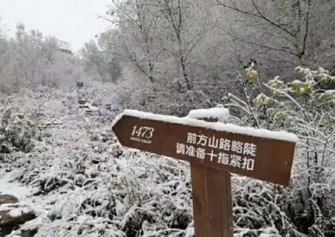 瑟雨�zf����ykd_见风起,遇瑟雨,尽显秋意浓.甚至,北京的初雪也悄然而至.
