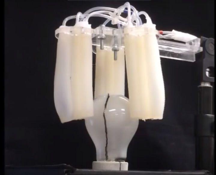 """科技 正文  """"我们开发的这款软体机器人抓手使用触觉传感技术对其所图片"""