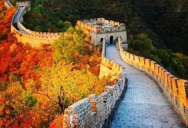 小提琴版《我爱你中国》,听醉了!
