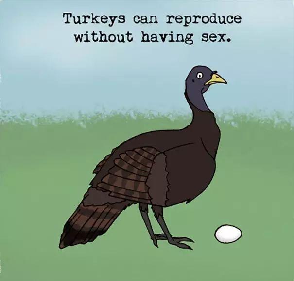 有趣的动物百科,99%的人都不知道