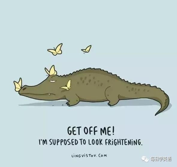 【胡小闹分享】这些超萌的动物被画成英文漫画,真是让