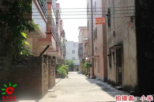 【我的村,我来拍】整村搬迁的花东镇凤凰村,面貌日新月异,村民安居乐业!家有狐狸殿下