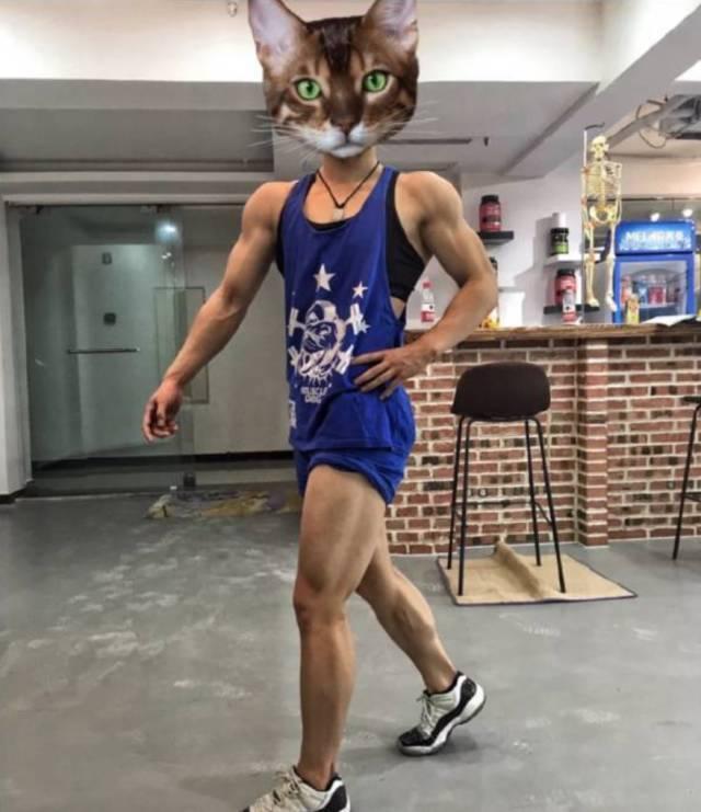 教练帅_中国最帅女教练爆红网络,身材碾压肌肉男