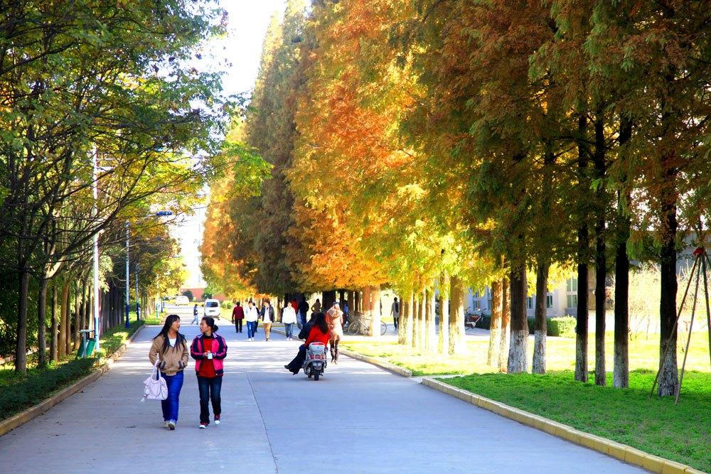 从学院到大学,信阳师范学院更名之路还要走多远