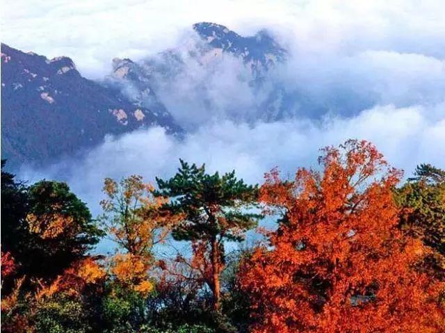西岳华山惊艳的秋日之美